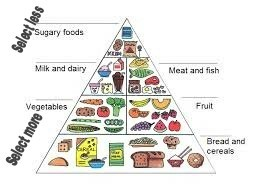 Food pyramid a balanced diet chart