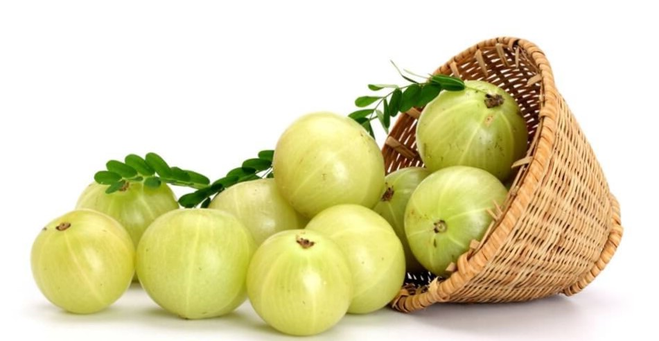 Benefits of Amla or Indian Gooseberry