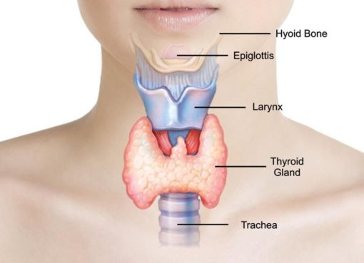 Thyroid Problems