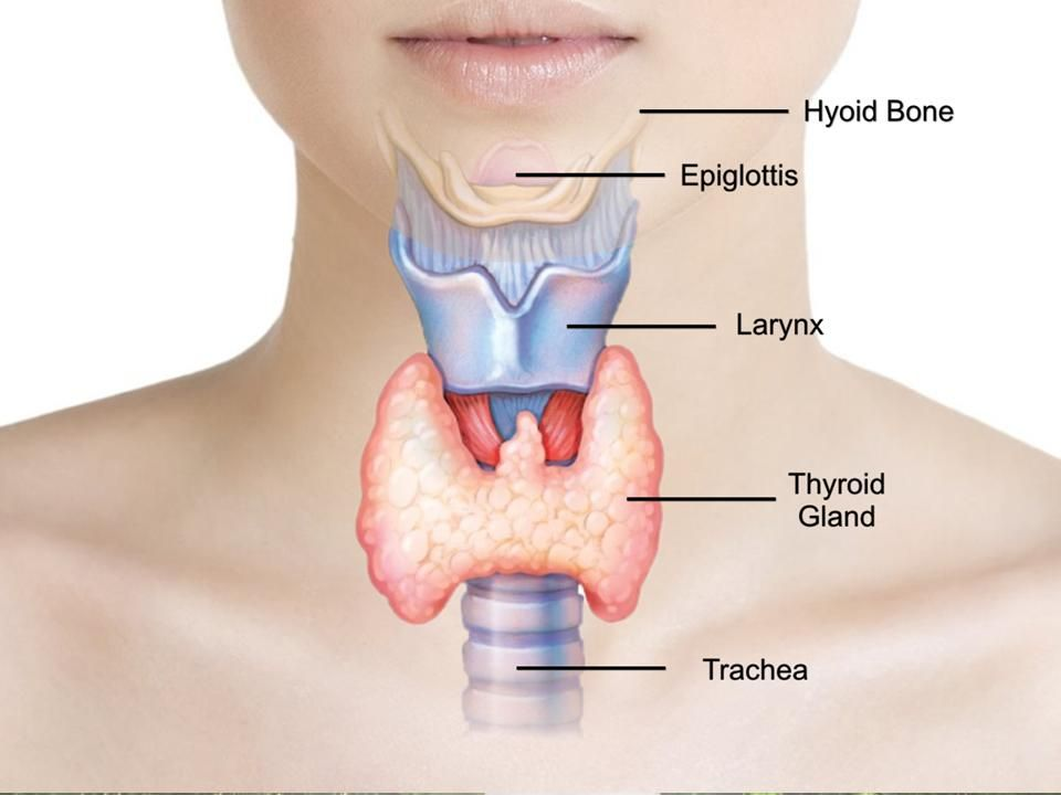 Thyroid Problems pic